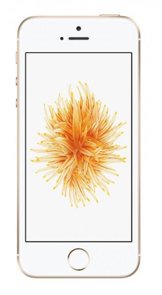 Apple iPhone SE 32GB Gold Smartphone ohne Simlock A1723 Akzeptabel